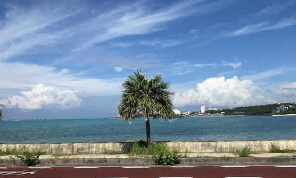 沖縄旅行ショット